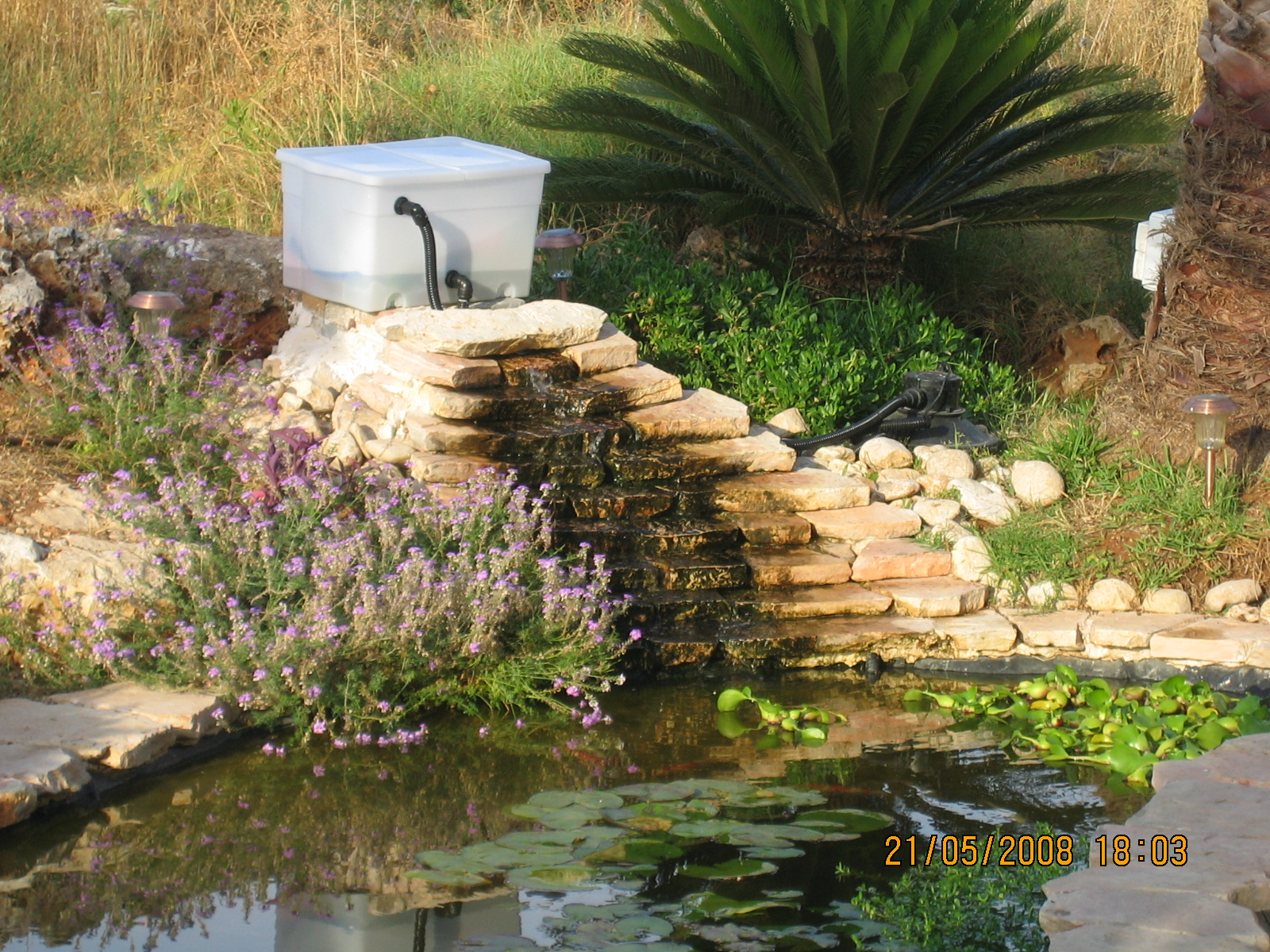 Diy how to build a gravitational filter for a koi pond for Making a koi pond